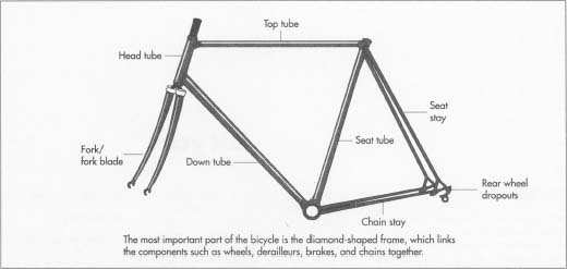 The frame is the most important part of the bicycle -